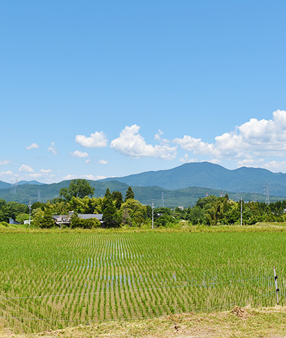 つるぽかを開発・製造している岐阜県の風景